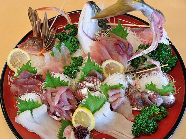 東京湾の定置網漁見学ツアー